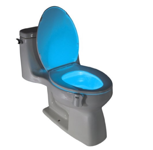 Amazon – Motion Activated Toilet Nightlight $16.99 (Great For Potty Training)