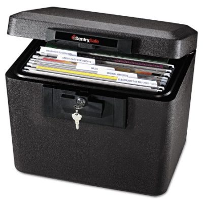 Walmart – Sentry Safe 1170 Security Letter Size Hanging File, 0.6 cu. Ft, Black Only $74.56 (Reg $129.99) + Free Shipping