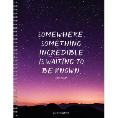 Walmart – TF Publishing 2018 Somewhere Something 9×11 Daily Weekly Monthly Planner Only $9.58 (Reg $13.10) + Free Store Pickup
