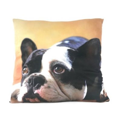 Walmart – Photo Real French Bulldog Selfie Throw Pillow Only $2.00 (Reg $8.88) + Free Store Pickup