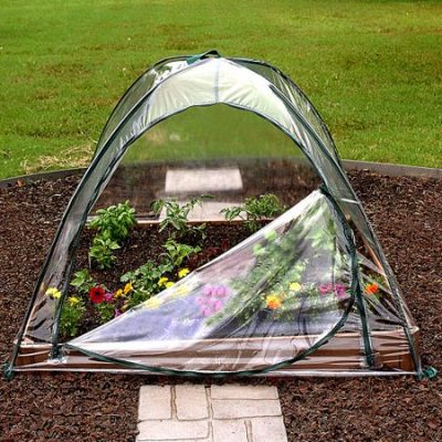 Walmart – Clear Cover, 48″ x 48″ Only $18.94 (Reg $24.99) + Free Store Pickup