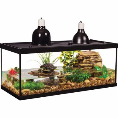 Walmart – TetraFauna 20-Gallon Deluxe Aquatic Turtle Tank Starter Kit Only $162.71 (Reg $299.99) + Free 2-Day Shipping