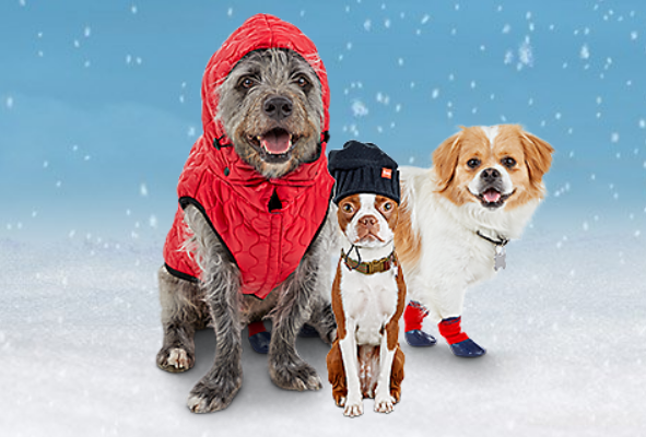 Petco – $10 off $30 Coupon For In-Store Purchases (Valid through 12/29/18)