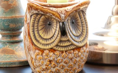 Walmart – ScentSationals Spotted Owl Full-Size Scented Wax Warmer Only $11.00 (Reg $15.00) + Free Store Pickup