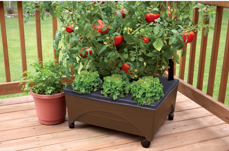 Lowes.com – Emsco Group Earth Resin Raised Garden Bed Only $19.98, Reg $29.98