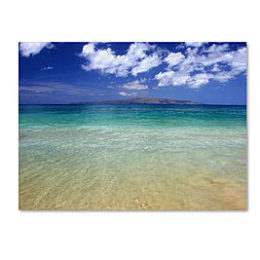 Sears – Trademark Fine Art Pierre Leclerc 'Hawaii Blue Beach' 14″ x 19″ Canvas Art Only $27.25 (Reg $37.99) + Free Store Pickup