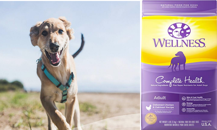 Amazon – 50% Off Wellness Complete Health Natural Dry Dog Food