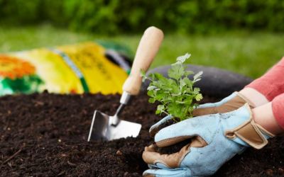 Home Depot Memorial Day Sale – $2 Miracle-Gro Garden Soil, $1 Annuals, $2 Mulch Bags, & More!
