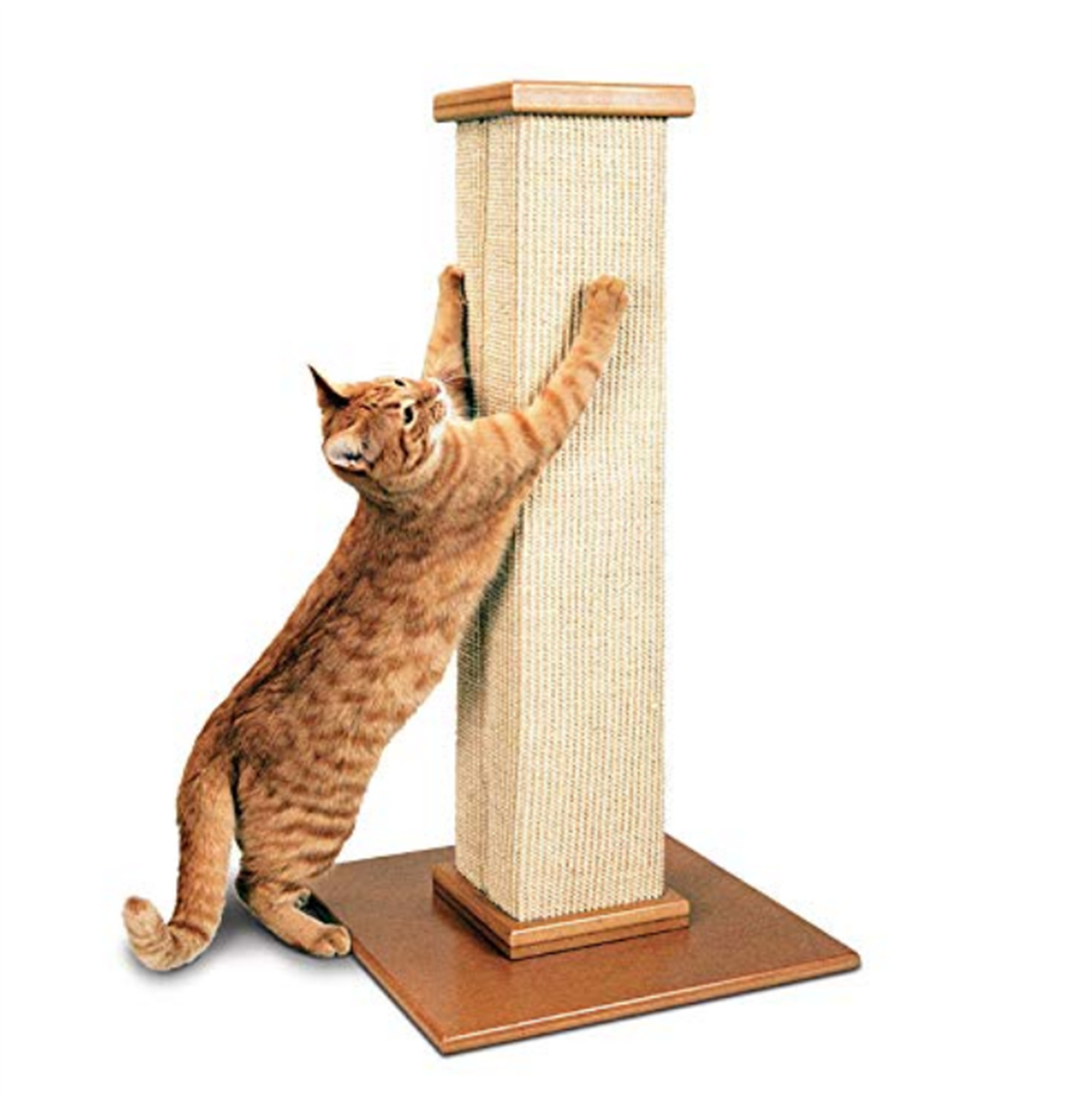 Amazon – SmartCat Pioneer Pet Ultimate Scratching Post Only $34.99, Reg. $49.99 + Free Shipping!