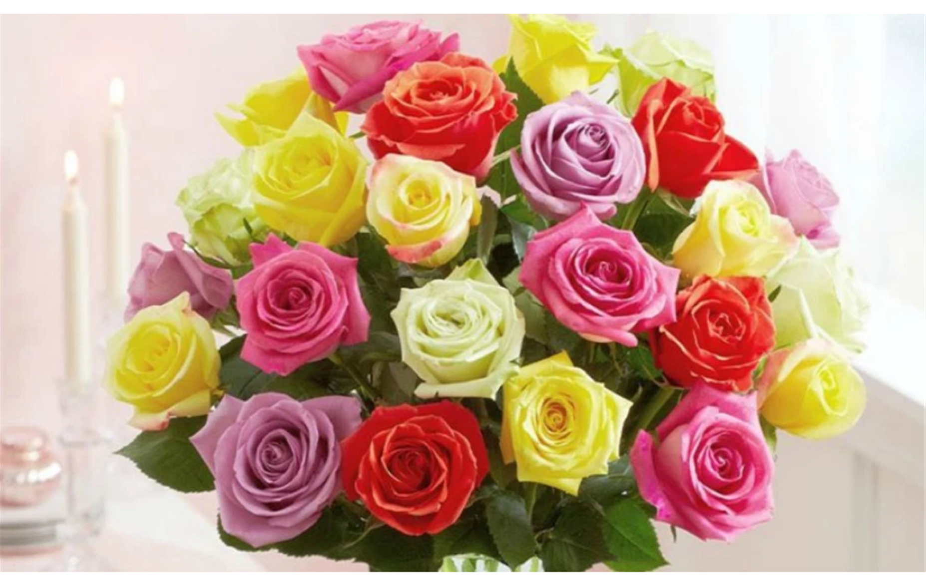 Two Dozen Assorted Roses Only $29.99 Delivered! GREAT VALENTINE'S DAY GIFT!!
