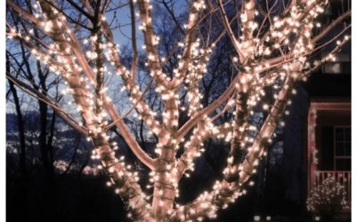 LED String Lights 60 Foot 110 Solar Powered Only $14.99, Reg $29.99 (3 Color Options) + Free Shipping On ALL Orders!
